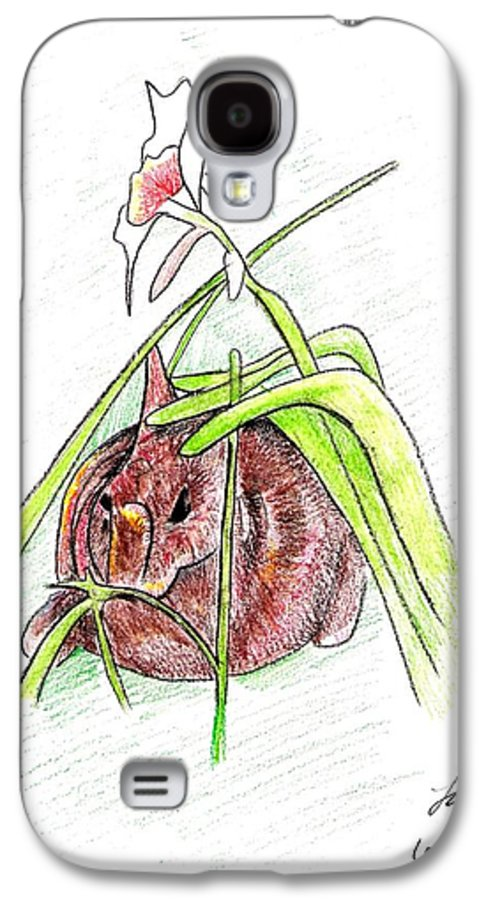 Rabbit Galaxy S4 Case featuring the drawing Rabbit by Loretta Nash