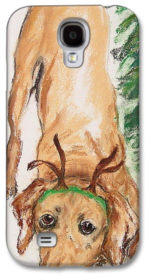Labrador Galaxy S4 Case featuring the drawing Santa's Helper by Cori Solomon