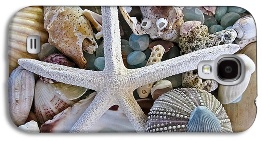 Seashells Galaxy S4 Case featuring the photograph Sea Treasure by Colleen Kammerer