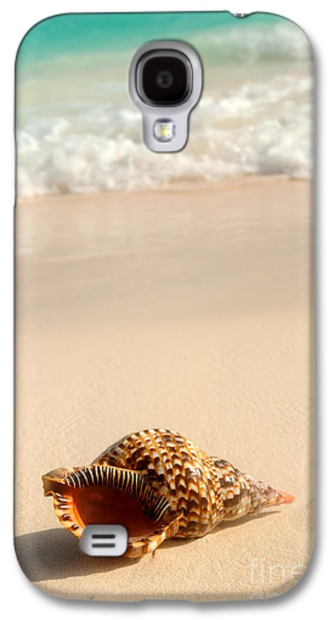 Seashell Galaxy S4 Case featuring the photograph Seashell And Ocean Wave by Elena Elisseeva