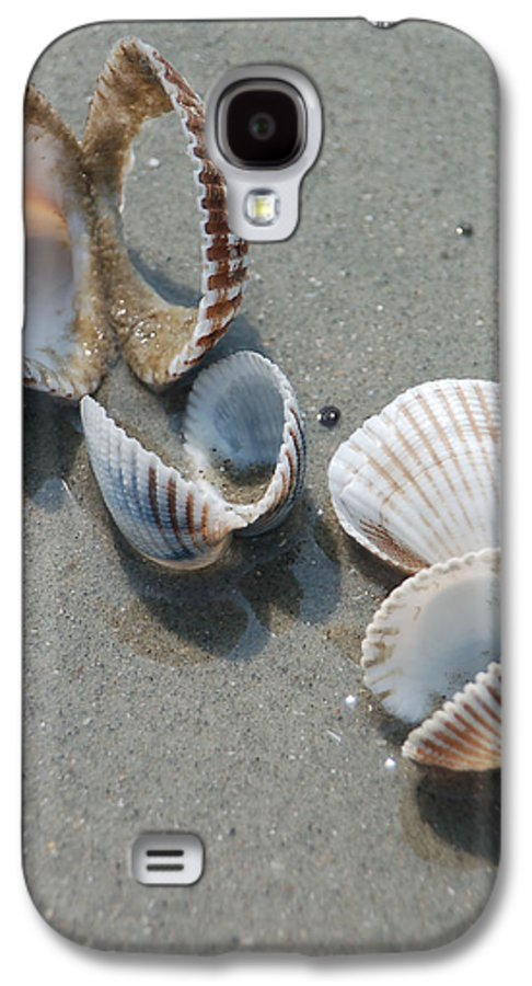 Sea Shell Galaxy S4 Case featuring the photograph She Sells Sea Shells by Suzanne Gaff