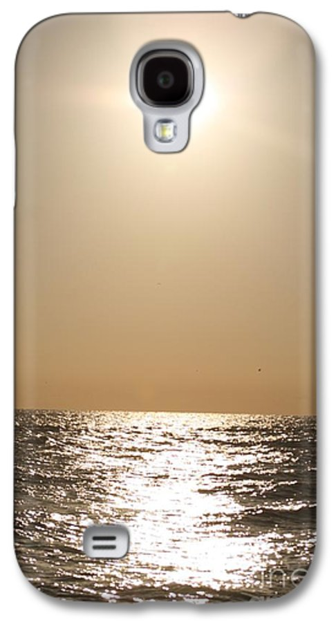 Silver Galaxy S4 Case featuring the photograph Silver And Gold by Nadine Rippelmeyer