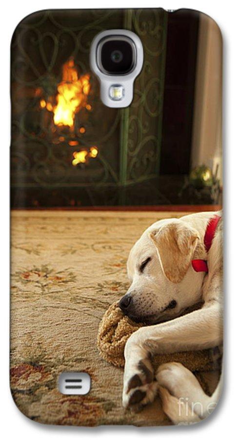 Puppy Galaxy S4 Case featuring the photograph Sleepy Puppy by Diane Diederich