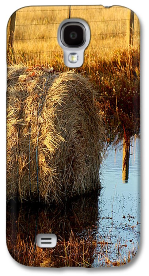 Hay Galaxy S4 Case featuring the photograph Soggy Bottom Feed by Kerri Huven
