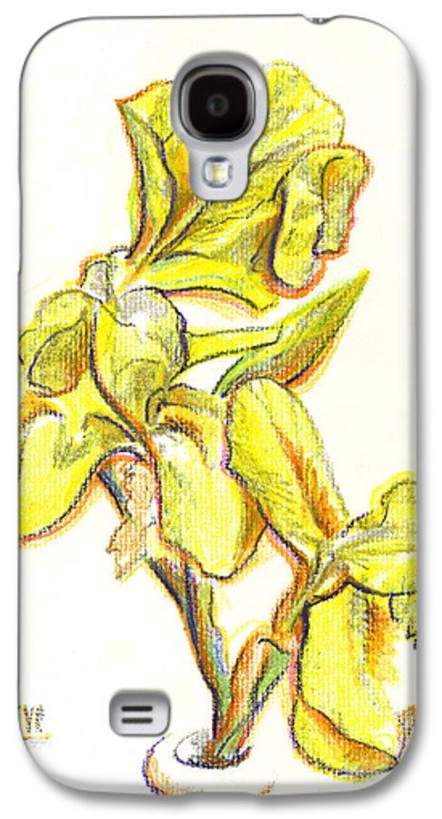 Spanish Irises Galaxy S4 Case featuring the painting Spanish Irises by Kip DeVore