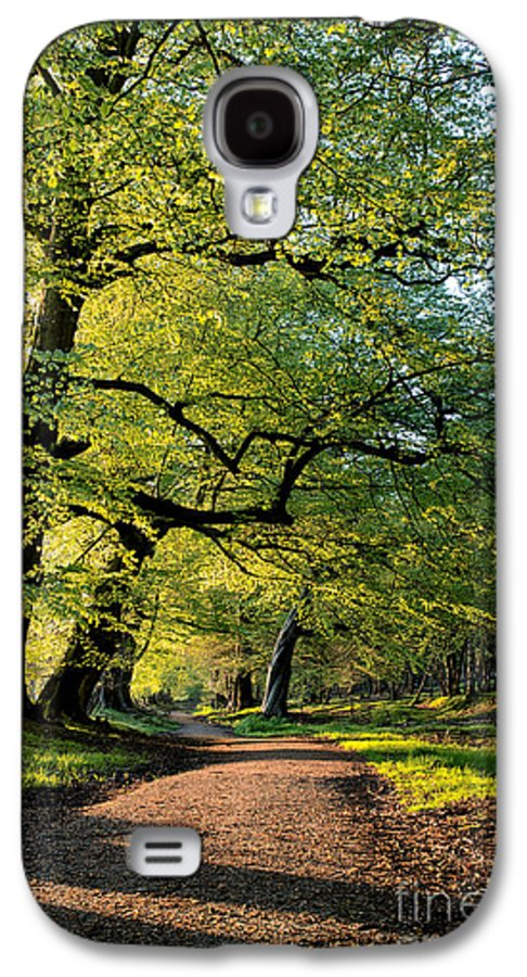 Ladys Walk Galaxy S4 Case featuring the photograph Spring Light by Tim Gainey