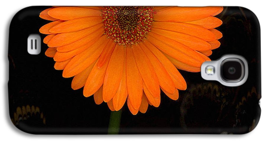 Gerbera Daisy Galaxy S4 Case featuring the photograph Standing Tall by Suzanne Gaff