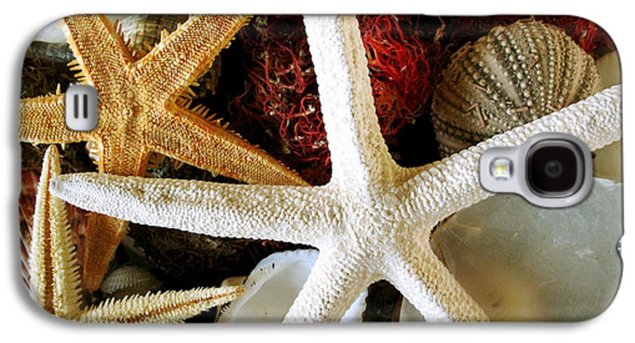 Starfish Galaxy S4 Case featuring the photograph Stars Of The Sea by Colleen Kammerer