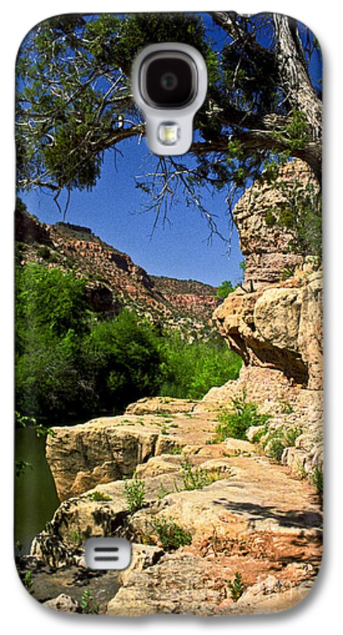 Arizona Galaxy S4 Case featuring the photograph Sycamore Canyon by Kathy McClure