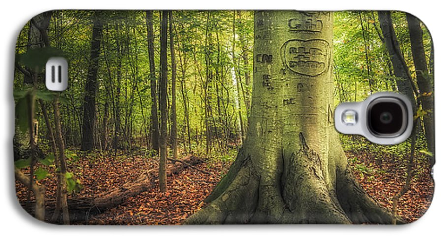 Tree Galaxy S4 Case featuring the photograph The Giving Tree by Scott Norris