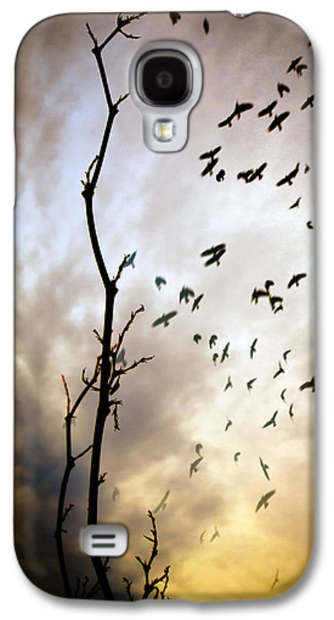 Tree Galaxy S4 Case featuring the photograph The Gods Laugh When The Winter Crows Fly by Bob Orsillo
