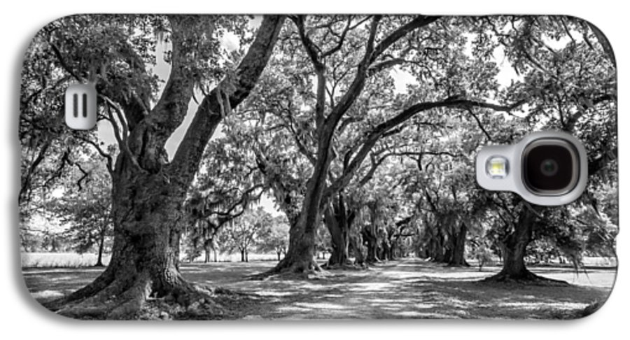 Evergreen Plantation Galaxy S4 Case featuring the photograph The Lane Bw by Steve Harrington