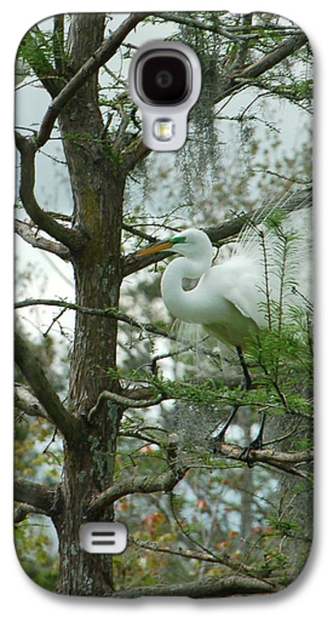 Egret Galaxy S4 Case featuring the photograph The Mating Dance by Suzanne Gaff