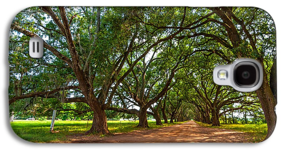 Evergreen Plantation Galaxy S4 Case featuring the photograph The Southern Way by Steve Harrington