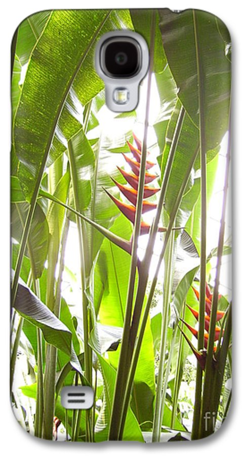 Plants Galaxy S4 Case featuring the photograph Tropical2 by Heather Morris