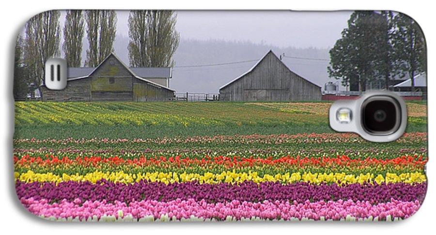 Tulips Galaxy S4 Case featuring the photograph Tulip Town Barns by Louise Magno