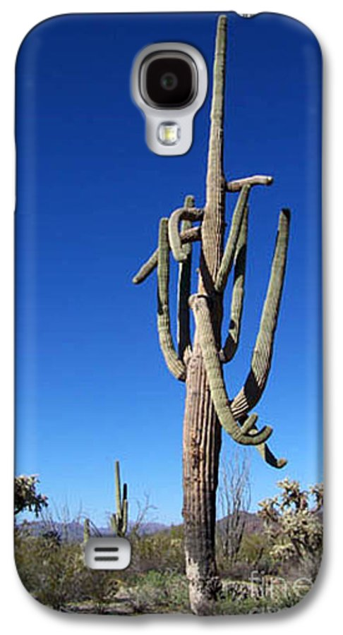 Sahuaro Galaxy S4 Case featuring the photograph Twisted Sentinal by Kathy McClure