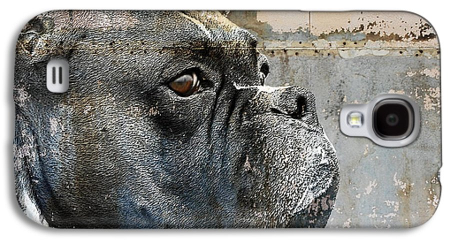 Dog Galaxy S4 Case featuring the digital art Watchful by Judy Wood