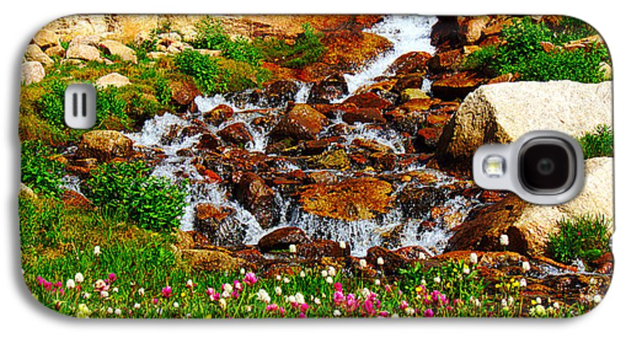 Wildflower Galaxy S4 Case featuring the photograph Wildflower Waterfall by Tranquil Light Photography
