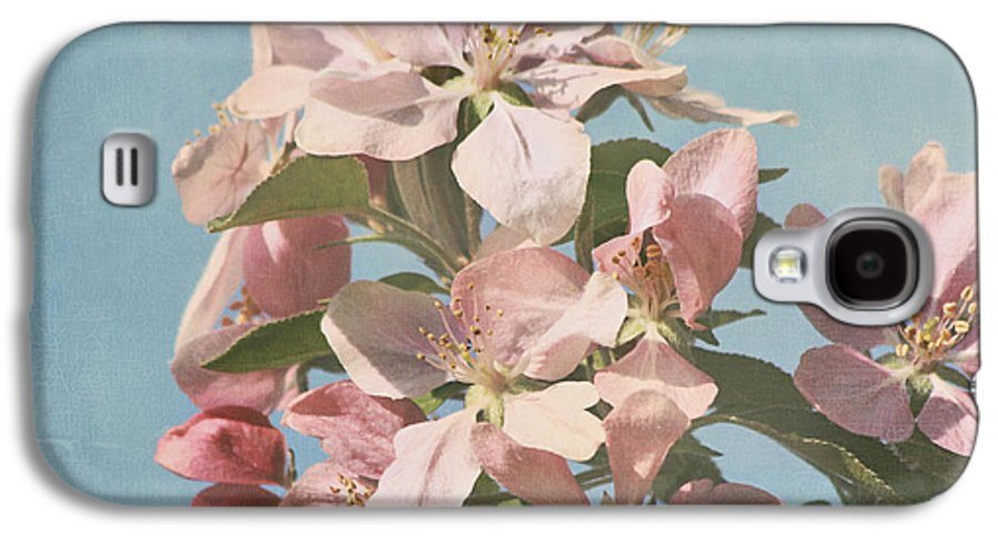 Cherry Blossoms Photographs Galaxy S4 Case featuring the photograph Cherry Blossoms by Kim Hojnacki