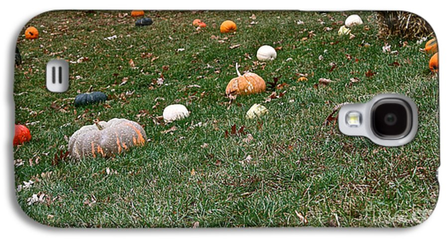 Outdoors Galaxy S4 Case featuring the photograph Pumpkins by Susan Herber