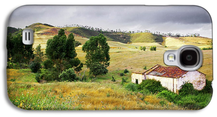 Calm Galaxy S4 Case featuring the photograph Ruin In Countryside by Carlos Caetano