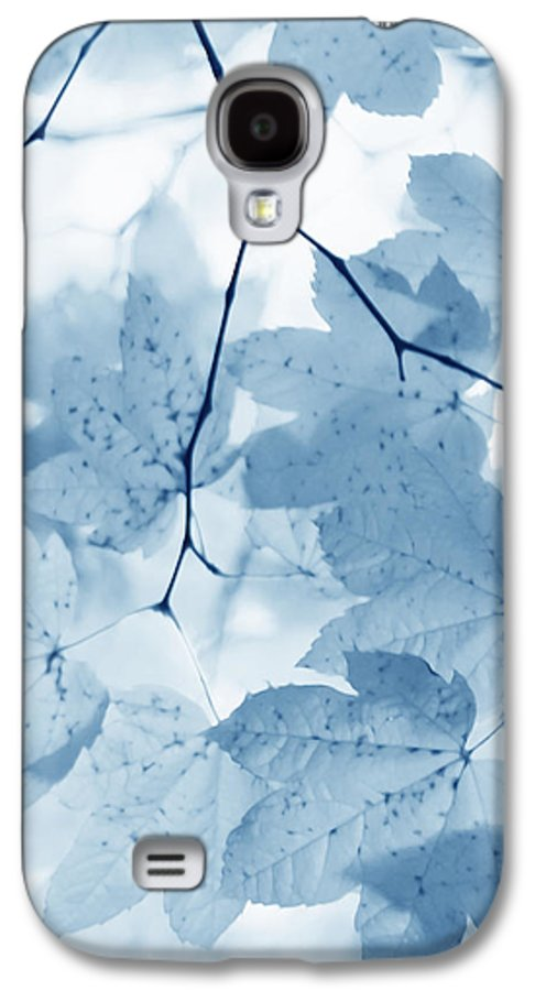 Leaf Galaxy S4 Case featuring the photograph Softness Of Blue Leaves by Jennie Marie Schell