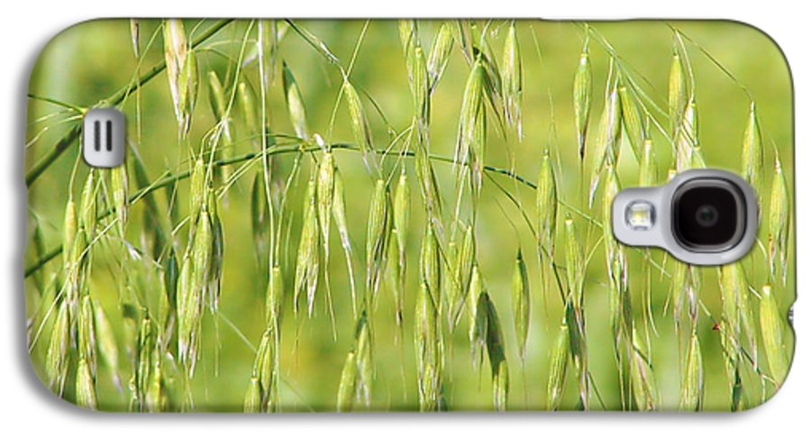 Oats Galaxy S4 Case featuring the photograph Sunny Day At The Oat Field by Christine Till