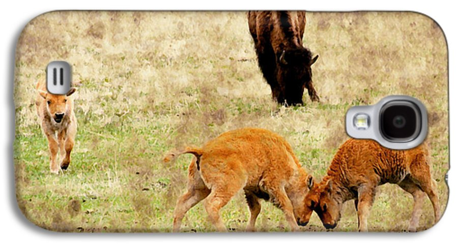 Bison Galaxy S4 Case featuring the photograph Yellowstone Bison by Ellen Heaverlo