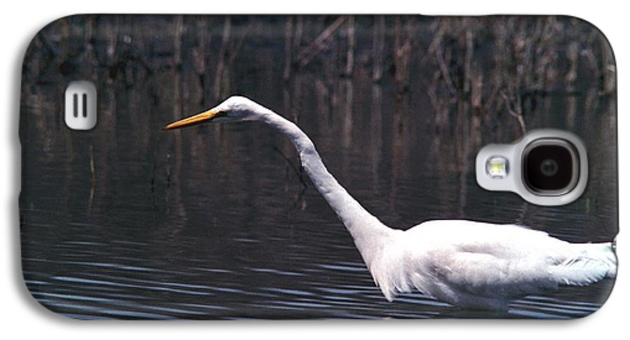 Great Egret Galaxy S4 Case featuring the photograph 070406-8 by Mike Davis