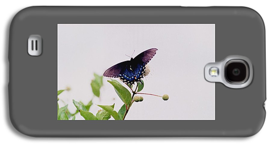 Butterfly Galaxy S4 Case featuring the photograph 080706-5 by Mike Davis