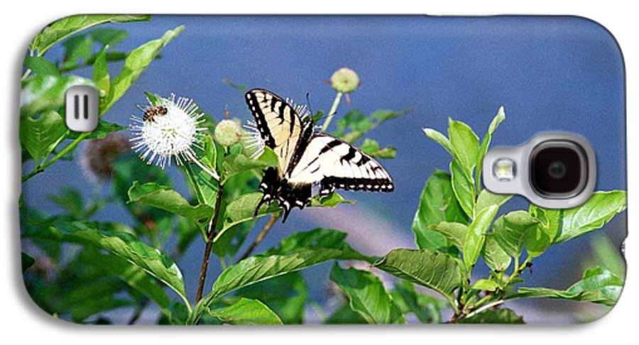 Butterfly Galaxy S4 Case featuring the photograph 080706-7 by Mike Davis