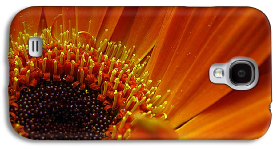 Clay Galaxy S4 Case featuring the photograph Floral by Clayton Bruster