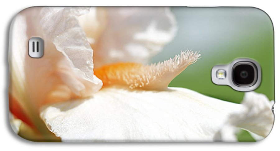 Genus Iris Galaxy S4 Case featuring the photograph Iris Flowers by Tony Cordoza