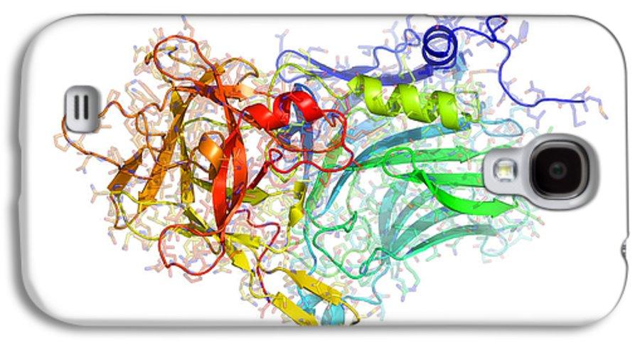 Tetanus Toxin C-fragment Galaxy S4 Case featuring the photograph Tetanus Toxin C-fragment Structure by Laguna Design