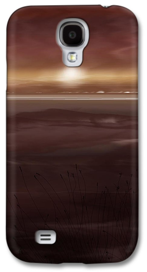 Seascape Galaxy S4 Case featuring the painting Tide Flats At Dusk by Anne Norskog