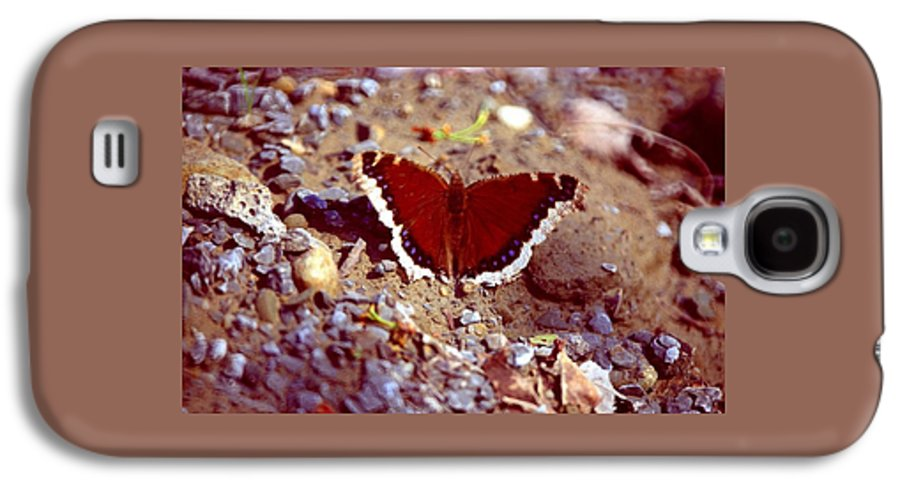Butterfly Galaxy S4 Case featuring the photograph 113093-1 by Mike Davis