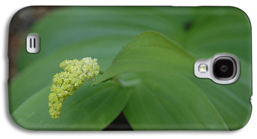 Flora Galaxy S4 Case featuring the photograph Untitled by Kathy Schumann