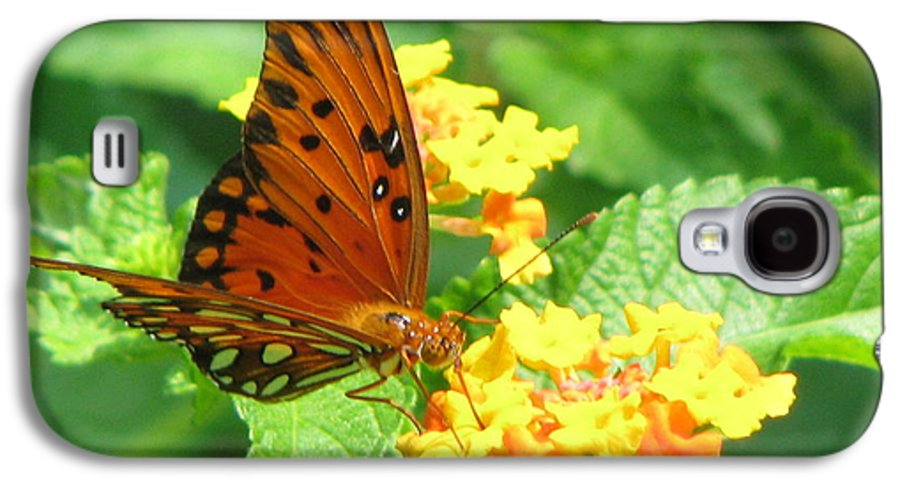 Butterfly Galaxy S4 Case featuring the photograph Butterfly by Amanda Barcon