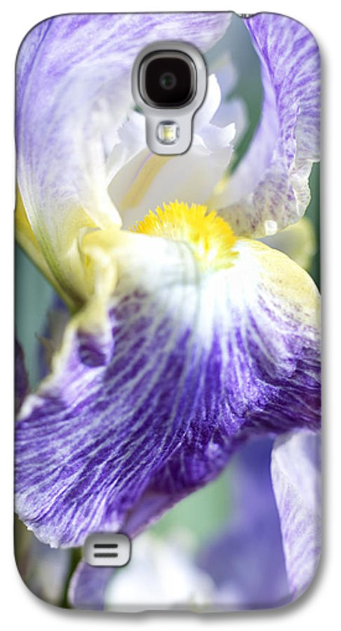 Genus Iris Galaxy S4 Case featuring the photograph Iris Flowers by Tony Cordoza