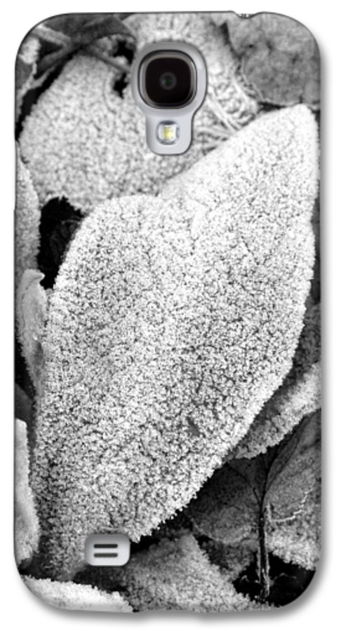 B&w Galaxy S4 Case featuring the photograph Untitled by Kathy Schumann