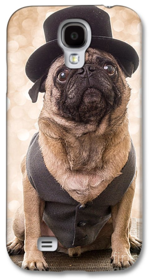 Pug Galaxy S4 Case featuring the photograph A Star Is Born - Dog Groom by Edward Fielding