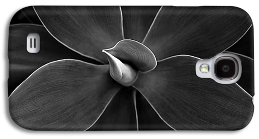 Agave Galaxy S4 Case featuring the photograph Agave Leaves Detail by Marilyn Hunt