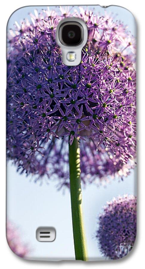 Allium Galaxy S4 Case featuring the photograph Allium Flower by Tony Cordoza