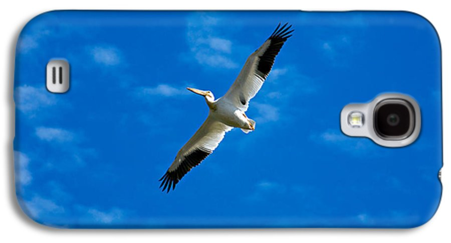 American Galaxy S4 Case featuring the photograph American White Pelican by Marilyn Hunt