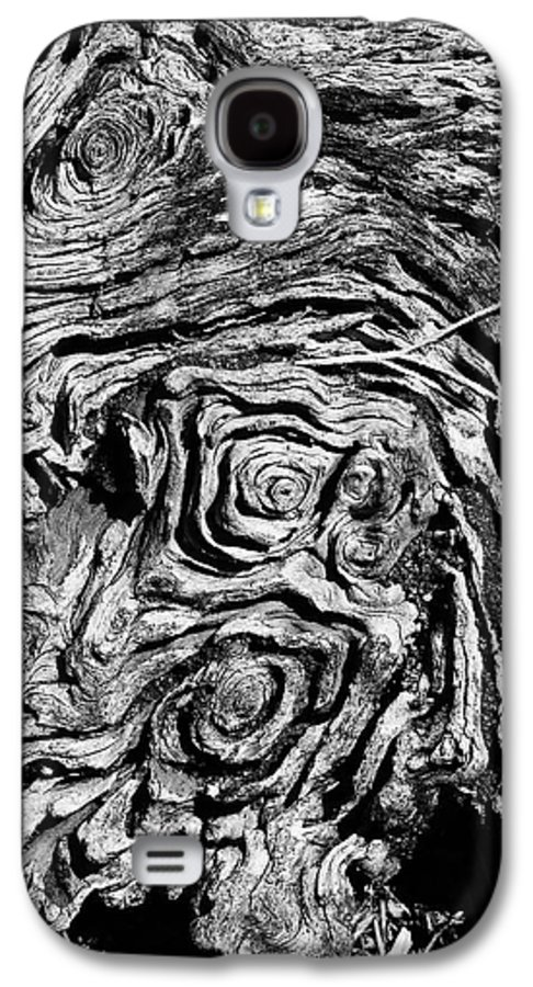 Tree Galaxy S4 Case featuring the photograph Ancient Stump by Christopher Holmes