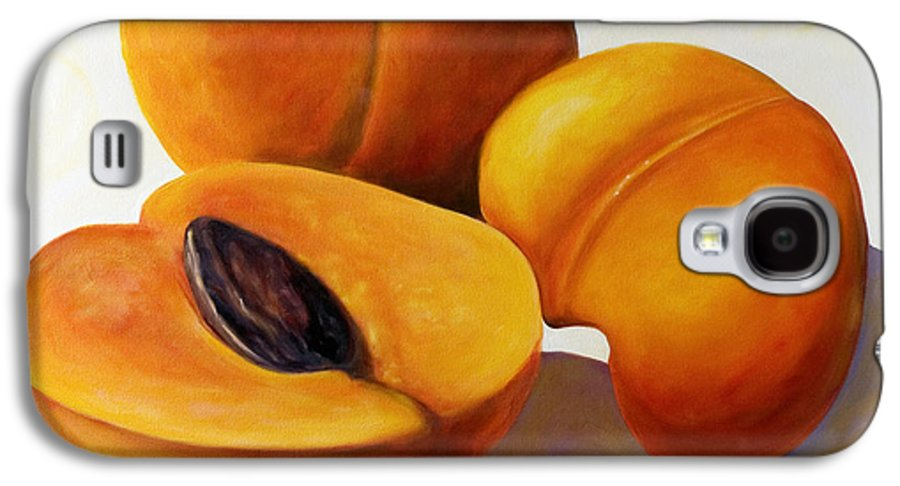 Apricots Galaxy S4 Case featuring the painting Apricots by Shannon Grissom