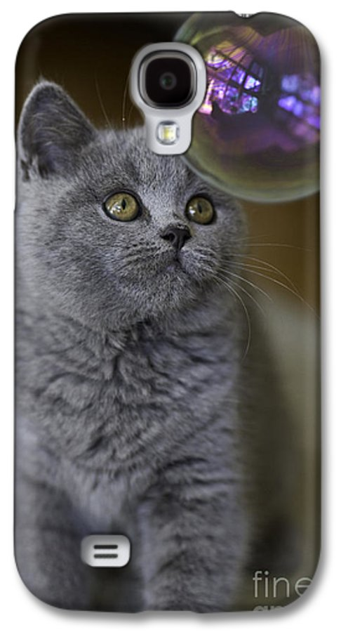 Cat Galaxy S4 Case featuring the photograph Archie With Bubble by Avalon Fine Art Photography