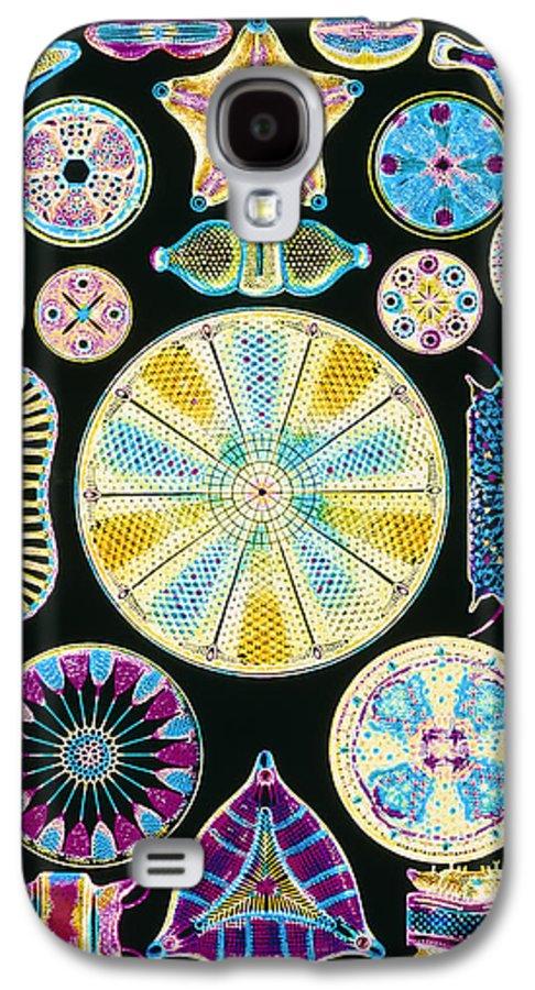 Centric Diatom Galaxy S4 Case featuring the photograph Art Of Diatom Algae (from Ernst Haeckel) by Mehau Kulyk