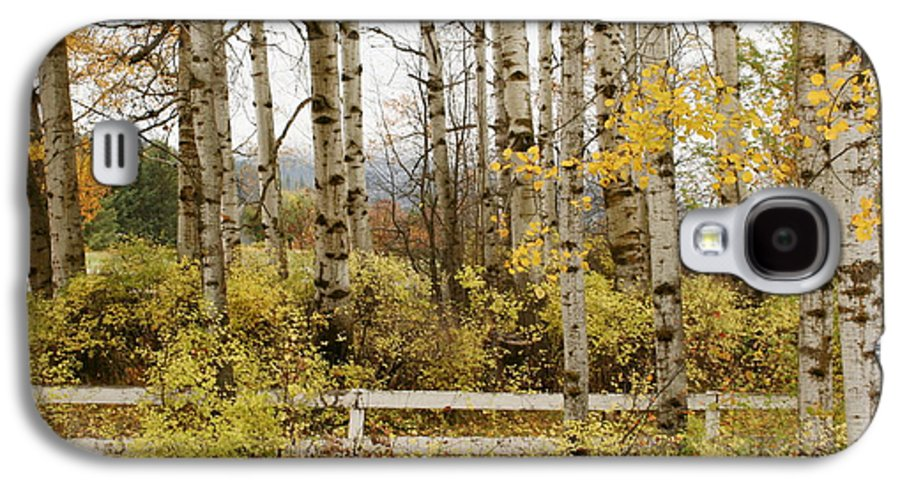 Grove Galaxy S4 Case featuring the photograph Autumn Grove by Idaho Scenic Images Linda Lantzy
